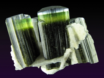 Elbaite Tourmaline with Clevelandite from Stak Nala, Skardu Road, Haramosh Mts., Gilgit, Northern Areas, Pakistan [db_pics/pics/tourm33a.jpg]