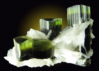 Elbaite Tourmaline with Clevelandite from Stak Nala, Skardu Road, Haramosh Mts., Gilgit, Northern Areas, Pakistan [db_pics/pics/tourm35b.jpg]