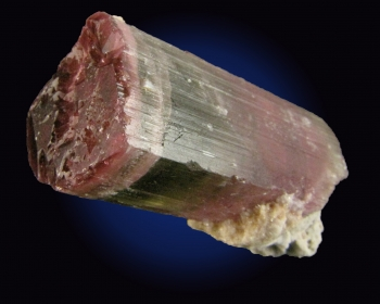 Tourmaline Var. Elbaite (Bi-colored) from Himalaya Mine, Mesa Grande, San Diego County, California [db_pics/pics/tourm38a.jpg]
