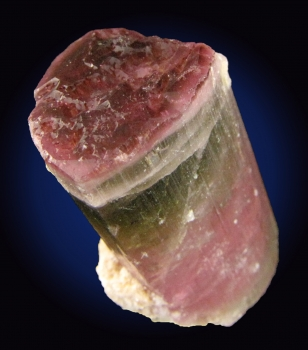 Tourmaline Var. Elbaite (Bi-colored) from Himalaya Mine, Mesa Grande, San Diego County, California [db_pics/pics/tourm38b.jpg]