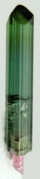 Tourmaline Var. Tri-color Elbaite