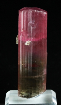 Tourmaline Var. Bi color Elbaite from Himalaya Mine, Mesa Grande, San Diego Co., California [db_pics/pics/tourm53a.jpg]